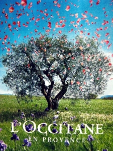Loccitane-Cherry-Blossom-Hand-Cream-Lotion8